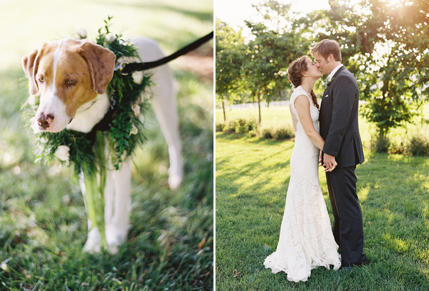 puppy-dog-wedding-inspiration